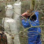 Bevor es gegen Mittag angefangen hat kräftig zu regnen, sind die Schüler des 11. Jahrgangs dabei ihren Skulpturen den Feinschliff zugeben.